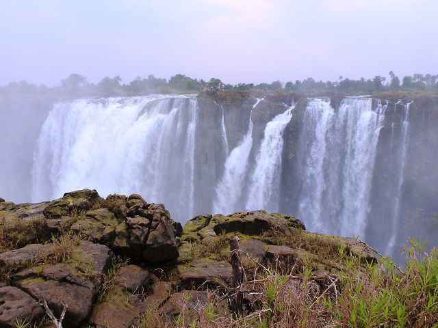botswana_2_20121110_1755575170