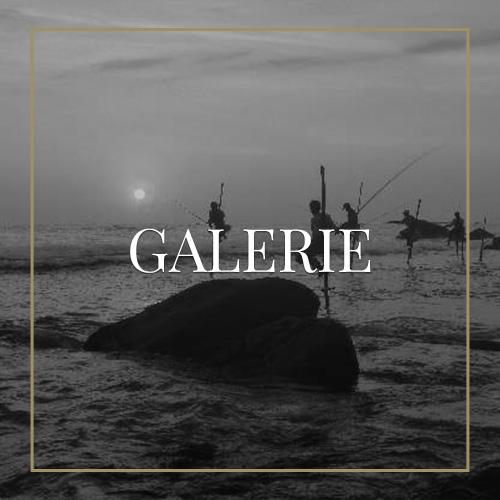 costa-rica-gallerysri-lanka-sw